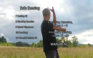 Solo Sensing DVD Menu